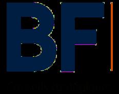BF Conseils stratégiques
